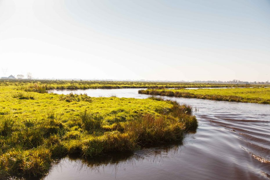 Foto van kronkelende sloot en grasland in Varkensland
