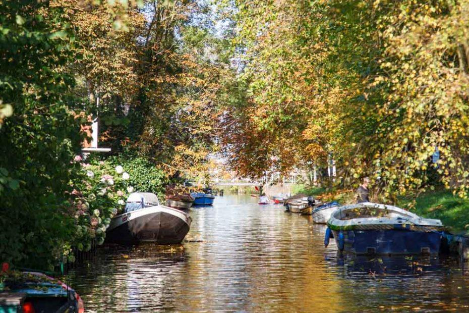 Foto Het Dee, Broek in Waterland